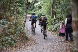 Haldon Cycle trails