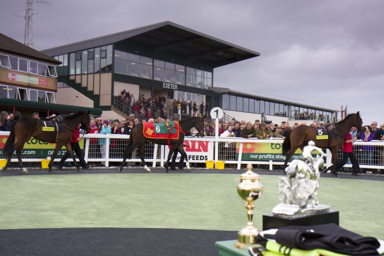 Devon and Exeter Races at Haldon
