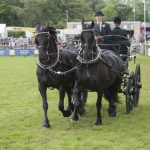 Carriages at Devon Country Show 2018