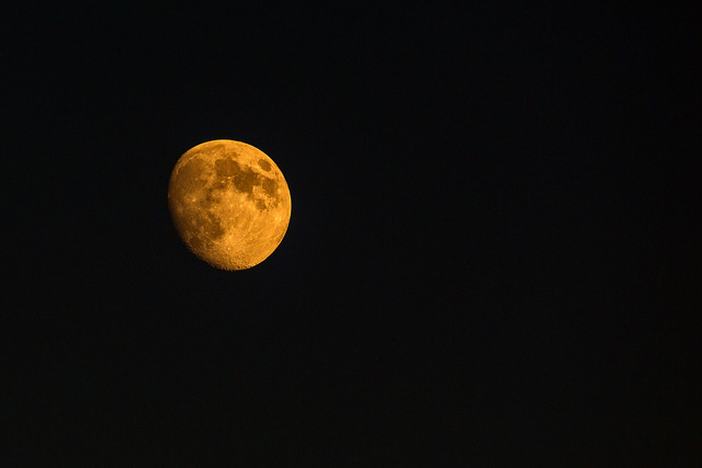 Blood Moon in Ashcombe